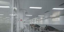 Hospital do Rim em SP vai começar a testar em pacientes transplantados soro anti-Covid desenvolvido pelo Butantan